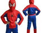 Spiderman Carnival Costume