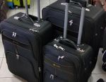 Bag suitcase Loyd. Delivery is free