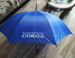 Umbrella cane (new)