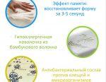 Anatomical Memory Pillow New