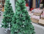 Christmas trees beauties