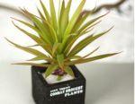 Yapay bitki