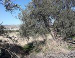 Field in Yermasogeia