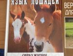 The book is all about horses