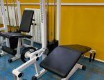 Hip Muscle Trainer - Flexor