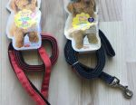 Leash for dogs