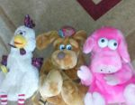 Stuffed Toys and Backpacks