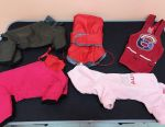 Clothes for dogs package