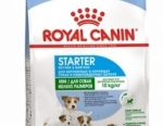 Dog food Royal Canin Maxi Starter