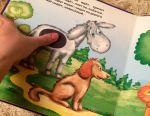 Cărți pentru copii, Clatter fly, Bremen, Teddy bear