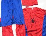 Carnival costume spiderman spiderman