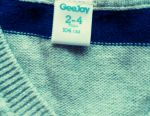 GeeJay pentru 2-4 și 4-5 ani