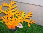 New Silicone Algae Corals for Aquarium
