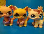 Pet shop cats polustoyachki LPS