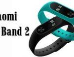 Bracelet XIAOMI MI band 2 (yulm5291)