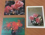 Mini postcards