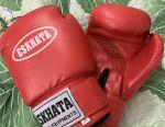 Boxing Gloves ESKHATA 10oz