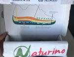 Spor Ayakkabı Naturino İtalya