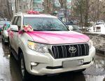 Γιορτή γάμου για διακόσμηση αυτοκινήτου / γάμου