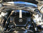 Nisa Mercedes s500