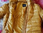 Jacket windbreaker new
