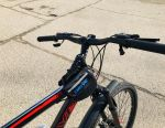 Bike new adult 19