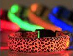 Collar glowing