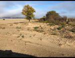 Plot, 9 hundred., Settlement (Izhs)
