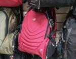 Bag backpack model 2030. Delivery
