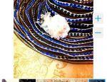 LOVE MOSCHINO hat, sequins
