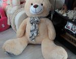 Ursuleț de pelerină într-o eșarfă elegantă