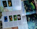 Brochures Goldfish, aquaria