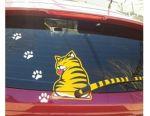 Sticker on auto cute kitty