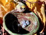 Вазочка «жовтоголовий корольок» кераміка ручної раб