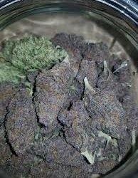 Marijuana Russian Black