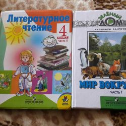 TEXTBOOKS SCHOOL 4 CLASS