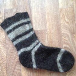 Köpek çorap