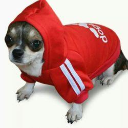 Pulover pentru câini