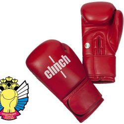 Boxing gloves for competition