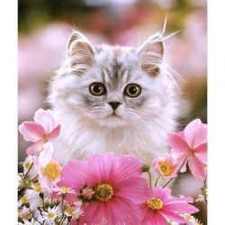 Diamond γάτα κέντημα
