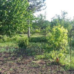 Plot, 7.5 sot., Agricultural (SNT or DNP)