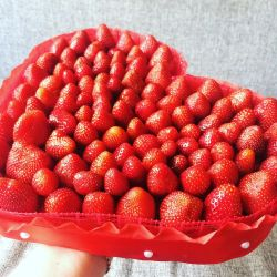Φράουλα 🍓 βιβλία 💐