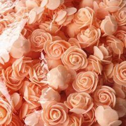 Τριαντάφυλλα αφρού
