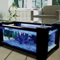 Aquarium Making
