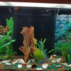 Aquarium 160 l