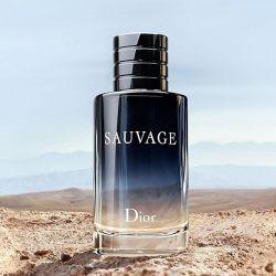 Το άρωμα των ανδρών της Christian Dior Sauvage (Dior Savage)