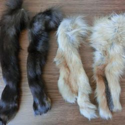 Fur Remains, Feet