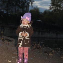Sheepskin coat, spring-autumn, cold summer.