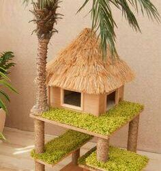 House, villa area for cats.