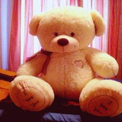 Teddy Bear + Gift